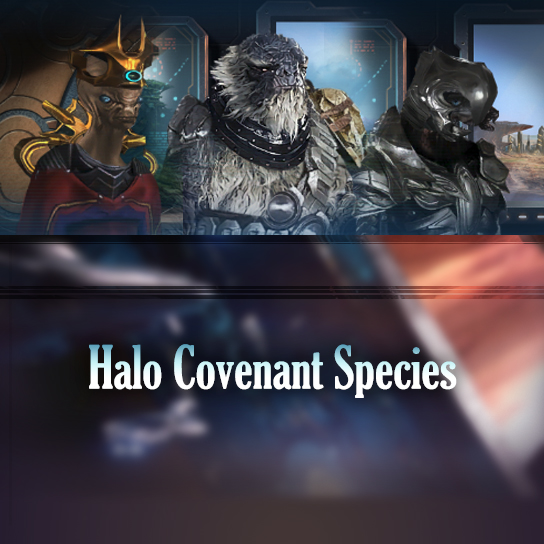 halo-covenant-species.jpg